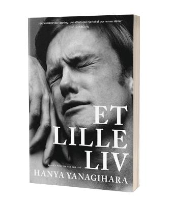 Bogen 'Et lille liv'