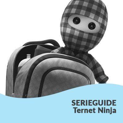 Rækkefølgen på Ternet Ninja-serien