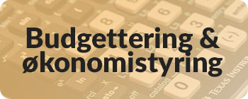 Budgettering og økonomistyring - tile
