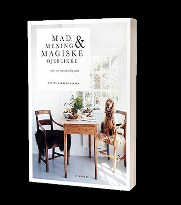 'Mad, mening og magiske øjeblikke' af Anette Harbech Olesen