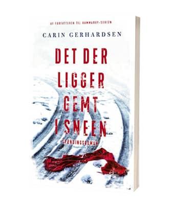 'Det der ligger gemt i sneen' af Carin Gerhardsen