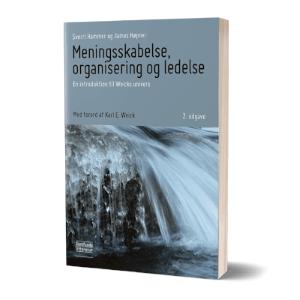 'Meningsskabelse, organisering og ledelse' af Sverri Hammer