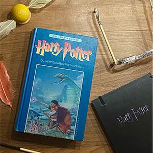 Book bento med Harry Potter